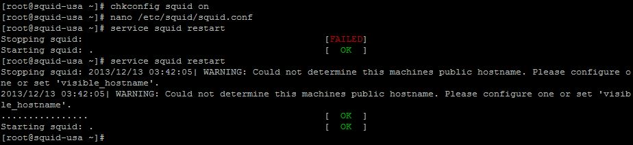 Could not determine this machines public hostname. Please configure one or set 'visible_hostname'. - Squid